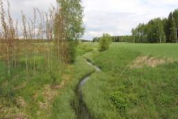 Hanhijoki virtaa viljelymaiden ympäröimänä Loimaan Alastarolla. Perattuun jokiuomaan on kehittynyt luontaisen kaltainen uomarakenne.