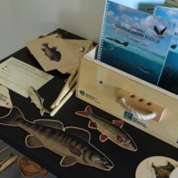 Kuvassa lainattavia ekotukimateriaaleja eismerkiksi kaloihin liittyen.