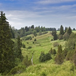 Kuva Häntälännotkosta: taivasta ja vehreä, puinen laaksomaisema.