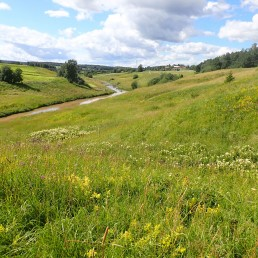 Kuvassa kesäinen niittymaisema, keskellä joki.